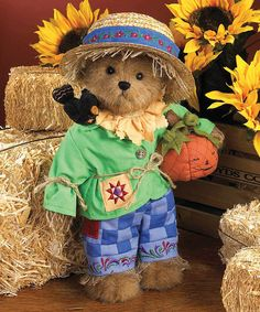 Another great find on #zulily! Scarecrow Bear Plush Figurine #zulilyfinds