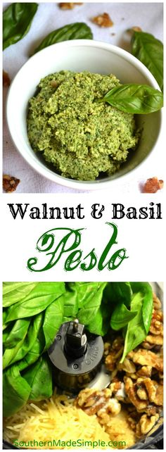 Walnut Basil Pesto - fresh pesto picked straight from the garden ...