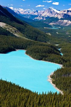 Peyto Lake, Alberta | Canada
