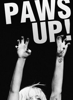 paws up little monsters!