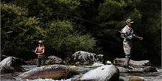 @valdinon #fishing & Relax in @vistitrentino La vacanza  studiata per far  coincidere la tua passione per la pesca e voglia di Relax!.     I corsi d'acqua  del Trentino, i laghi della val di Non, offrono una cornice ideale per chiunque intenda dedicarsi alla pesca. La trota è sicuramente la regina incontrastata delle nostre acque, dove però non mancano altre specie tra cui lucci, carpe e temoli.      Una vacanza tra pesca, benessere, natura e montagna alla scoperta delle meraviglie del…