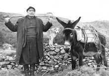 Crete Island, Simple Photo, Crete Greece, Goats, The Past, Horses, Culture, History, Pictures