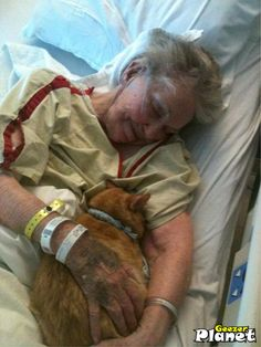 The hospital in which this grandma is living her last few days allowed her cat in to visit her. Priceless.