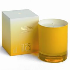 Bougie joyeuse parfumée au Jasmin  Jasmine Flowers Candle for Inner Light and Joy    Revel in the purest of light and a pervading sense of bliss with this beautiful candle, infused with the essential oils of jasmine flowers.  €$50 PRIX - PRICE : 50 EUROS - 50€