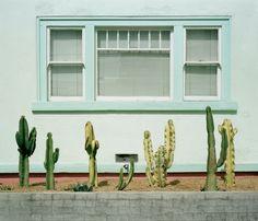 .:L.A CHICANO CULTURA:.