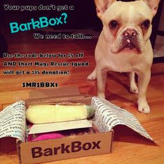 Short Mugs Rescue Squad has a $5 off BarkBox coupon! For each subscription BarkBox will donate $15 toward SMRS! SMRS helping save french bulldogs, boston terriers, english bulldogs, and pugs.