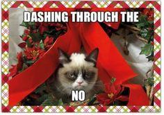 Grumpy cat holiday