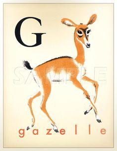 Vintage Français G Print 11 x 14 pouces Gazelle par ChildsTouch