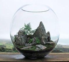 décor rocheux pour votre terrarium plante, idée fantastique comment aménager son terrarium