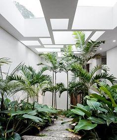 A green interior - blog | Ibiza Interiors