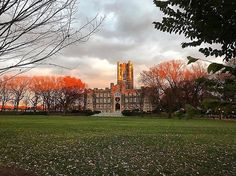 From our friends at Fordham  @fordhamuniversity - Go forth and set the world on fire.  Photo by @marquisdep (FCLC '15)  #Fordham #jesuiteducated #rosehill #bronx #classickeating #fordhaminthefall #goviewyou