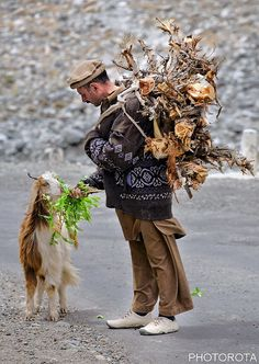 Man (in what looks like a pretty dry, rocky locale) feeds green plants to a goat. Pakistan