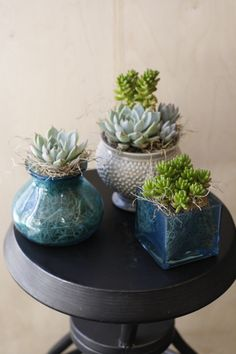 We love finding fresh new ways of weaving succulents into our tabletop designs. Stay tuned for more from today's wedding - kicking off the first of the season on Check out more of our wedding galleries here! Table Top Design, Wedding Gallery, Stay Tuned, Tabletop, Galleries, Our Wedding, Wedding Flowers, Succulents, Weaving