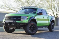 I'd love a Raptor! Just not a green one..