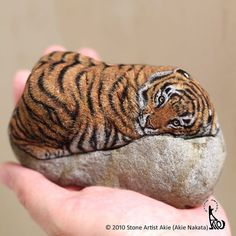 Akie Nakata, aka Stone Artist, is a Japanese artist who turns stones into tiny animals that fit in your palm. She does that by painting them and has been doing Tiger Painting, Stone Painting, Rock Painting, Painted Rock Animals, Painted Rocks, Painted Window Art, I Got A Rock, Pet Rocks, Rock Crafts