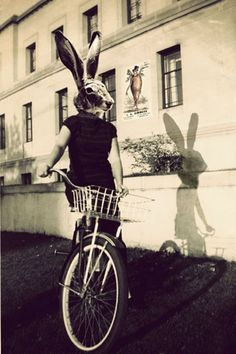 Photo Collage Print,  Bunny on Bicycle, 8x12 Rabbit Head Photograph, Easter Decor.