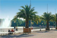 34 fotos que demuestran que la ciudad más bella de Hannover ... Orilla Lago Maschsee