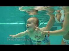 Babyschwimmen - (under) water babys