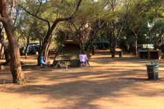 Campsites in the Kruger National Park. Camping with great amenities such as shops, restaurants, swimming pools, filling stations, bush walks & game drives. Kruger National Park, National Parks, Campsite, South Africa, Swimming Pools, Things To Do, Sidewalk, Camping, Swiming Pool