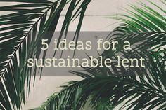 #environment #ecofriendly #lent #challenge #sustainability #sustainableliving #green #environmentallyfriendly #eco #ecoblogger #thegoodlife