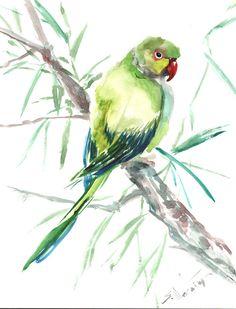 Parakeet original watercolor painting by Suren Nersisyan