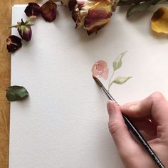 Do you want your own custom flower portrait? Do you want your own custom flower portrait? Watercolor Video, Watercolor Painting Techniques, Watercolour Tutorials, Watercolor Rose, Watercolor Drawing, Simple Watercolor Flowers, Watercolor Pencils, Watercolor Wedding, Painting Abstract