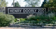 Henry Doorly Zoo in Omaha is a world-class zoo famous for its involvement with breeding endangered species from around the world.  It hosts world's largest indoor desert and nocturnal exhibits along with one of the world's largest indoor rainforests.