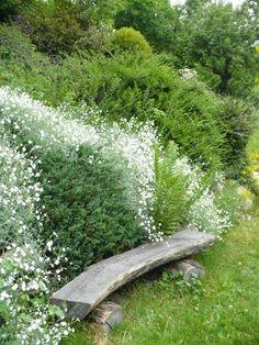 Výsledek obrázku pro permakulturní zahrada