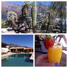 Westward Look Resort & Spa in Tucson, AZ   @efelons photo: Mimosa filled spa afternoon! #arizona