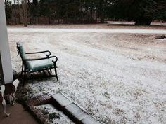 My place in Alabama 1/29/14