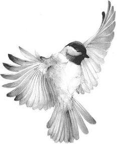 New love art tattoo birds ideas Tattoos 3d, Kunst Tattoos, Body Art Tattoos, Movie Tattoos, Skull Tattoos, Foot Tattoos, Sleeve Tattoos, Bird Drawings, Pencil Drawings