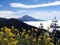 》Blick auf den Pico del Teide: Teneriffa ist, wie alle Kanarischen Inseln, vulkanischen Ursprungs. Der Teide-Nationalpark rund um den Vulkan gehört zum Unesco-Welterbe und lädt zu Wandertouren rund um die Insel ein. Um den Gipfel des Teide besteigen zu dürfen, braucht man jedoch eine Genehmigung.《