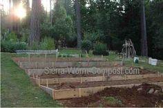 sloped vegetable garden | Garden Layout to Maximize Gardening Success