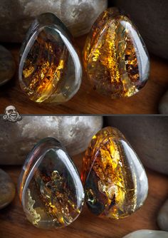Even though I would never get gauges- these are beautiful. Amber Plugs by Oracle