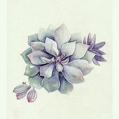 simple plants - Pesquisa Google