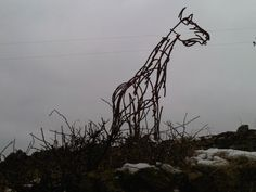 came across this in a field in Cumbria in the middle of nowhere - charming!