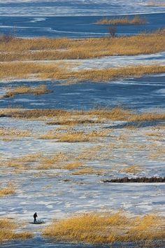 Danube Delta in winter time, Romania www.romaniasfrieds.com / SEJOURS/ The wild paradise of the Danube Delta