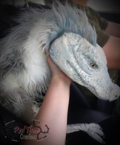 dragon,#dragon Snake Monster, Human Puppet, Puppet Costume, Dragon Puppet, Cool Dragons, Fantasy Beasts, Dragon Artwork, Dragon Rider, Beautiful Dogs