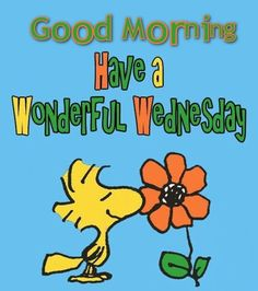 Are you looking for the best good morning Wednesday images? We have 20 perfect Wednesday quotes for you to share with your friends. Wish all your friends a good morning with one of these wonderful good morning happy Wednesday quotes. Wednesday Greetings, Wednesday Hump Day, Happy Wednesday Quotes, Good Morning Wednesday, Wednesday Humor, Wacky Wednesday, Wonderful Wednesday, Good Morning Good Night, Good Morning Quotes