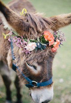 Bohemian flower donkey