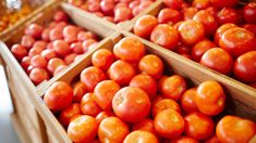 4 Ways To Make Out-Of-Season Tomatoes From The Supermarket Taste Delicious | Rachael Ray Show