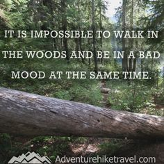 Photography Quotes : QUOTATION – Image : Quotes Of the day – Description Adventure and Hiking Quotes It is impossible to walk in the woods and be in a bad mood at the same time. Sharing is Caring – Don't forget to share this quote ! New Quotes, Mood Quotes, Funny Quotes, Inspirational Quotes, Change Quotes, Attitude Quotes, Daily Quotes, Qoutes, Life Quotes