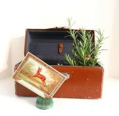 Antique Camera Case Vintage Kodak Chestnut by happenstanceNwhimsy, $15.00