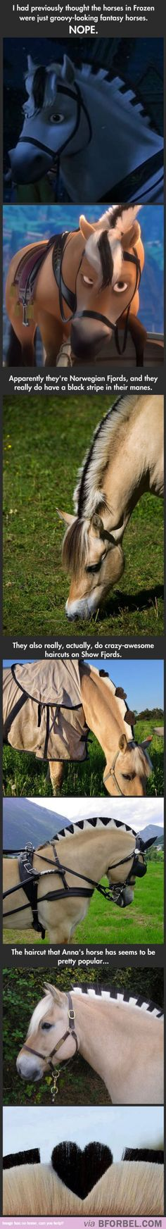 "The Amazing Real Horses That Inspired The Horses In ""Frozen""…"