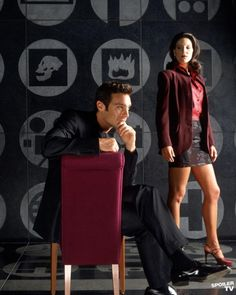 The Pretender (Love this show, have the DVDs)