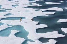 「北極」の画像検索結果