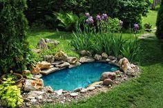 small backyard pond designs | Garden Pond Ideas for Design, Lighting, Accessories & Plants