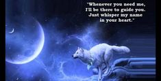 Neon Car Going To The Moon Wolf Wallpapers) – Live Wallpapers Wolf Qoutes, Lone Wolf Quotes, Best Quotes, Life Quotes, Sad Quotes, Wolf Spirit Animal, Wolf Stuff, Native American Quotes, She Wolf