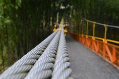 Bridge by Maurogo  on 500px