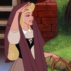 Aurora / Sleeping Beauty / Briar Rose - brown and black dress